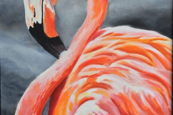 AnukritiSingh_Flamingo