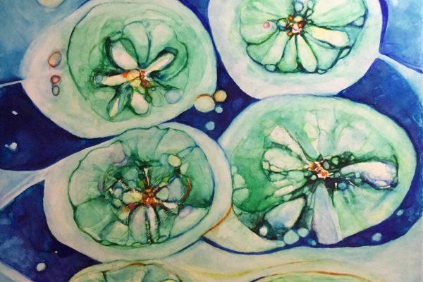 Cosmic lillies